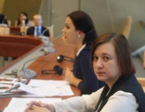 Ирина Седова рассказала на мероприятии в рамках ПАСЕ о преследовании журналистов в Крыму